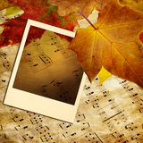 Autumn melody Royalty Free Stock Image
