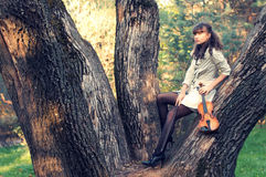 Autumn melody Stock Photography