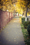 Autumn Memories Stock Photos