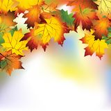 Autumn mesh. Vector autumn background with colorful leaves stock illustration