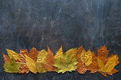 Autumn metallic gold copper leaf frame. Different fall metallic. Paint leaves on dark natural background with copy space. Horizontal mockup with autumn leaves stock photos