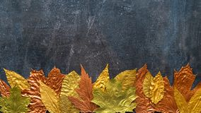 Autumn metallic gold copper leaf frame. Different fall metallic. Paint leaves on dark natural background with copy space. Horizontal mockup with autumn leaves stock images