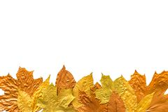 Autumn metallic gold copper silver leaves isolated on white. Different fall metallic paint leaves border frame on white stock photo