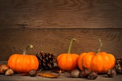 Autumn mini pumpkins over rustic old wood background Royalty Free Stock Photography