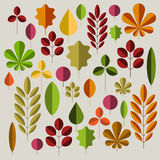 Autumn minimalist abstract floral background pattern Stock Photography