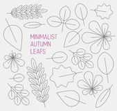 Autumn minimalistic abstract floral background pattern Stock Photos
