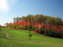 Autumn in Minnesota. Golf course in September in the state of Minnesota Stock Images