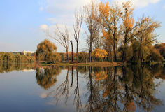 Autumn mirror lake Royalty Free Stock Photos
