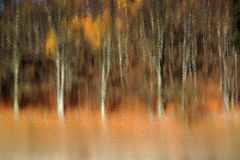 Autumn mirroring Royalty Free Stock Photography