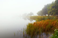 Autumn Mist. Taken looking across a lake in Norfolk - a misty dawn in Autumn Royalty Free Stock Images