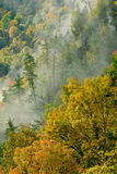 Autumn Mist Royalty Free Stock Image