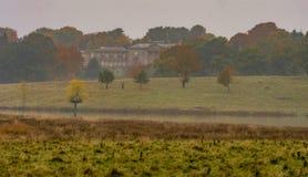 Autumn mist Royalty Free Stock Photography