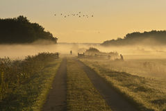 Autumn mist runner Royalty Free Stock Images