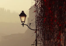 Autumn mist. Street light on the background of the evening autumn haze; Red grape leaves on the wall Royalty Free Stock Image