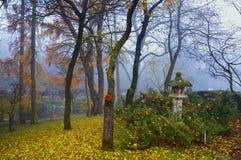 Autumn mist among trees Stock Image