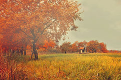 Autumn misterious landscape with lonely abandoned house Royalty Free Stock Photos