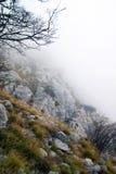 Autumn mists Stock Photography