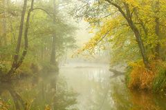 Autumn misty day on a Radbuza river. Stock Images