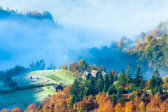 Autumn misty morning mountainside Stock Images