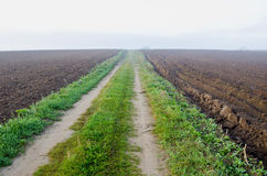 Autumn misty road in plowed farm field Stock Photos