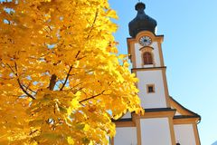 Autumn in Mittersill, Austria. Parish church. Tree with very yellow autumn leafs and the baroque parish church or Pfarrkirche of Mittersill, National Park Hohe Royalty Free Stock Photos