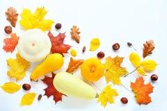Autumn Mock Up fotografia de stock