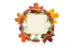 Autumn Mock Up imagens de stock royalty free