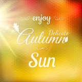 Autumn Modern Typographical Background Eps 10 Stock Foto