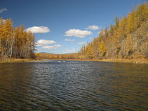 Autumn in Mongolia Royalty Free Stock Image