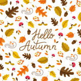 Autumn and monoline lettering. Vector autumn greeting card with autumn leaves and lettering  on white background. Perfect for autumn holidays, Thanksgiving Day Stock Images