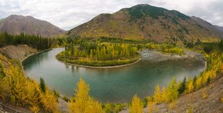 A Montana Fall. Autumn in Montana, Western United States Stock Images