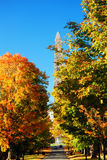 Autumn Monument Royalty Free Stock Photography