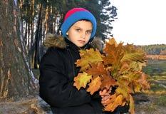 Autumn mood. Royalty Free Stock Photo