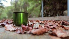 Autumn mood background. stock footage
