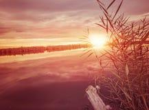 Autumn mood. Colorful  autumn sunrise  near a river Stock Photography