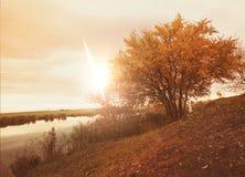 Autumn mood. Colorful  autumn sunrise  near a river Royalty Free Stock Images