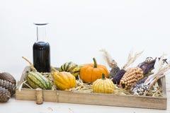 Autumn mood with decorative pumpkins Stock Image