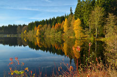 Autumn mood at a lake Stock Images