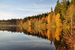 Autumn mood at a lake Stock Photo