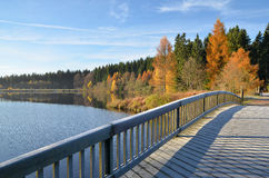Autumn mood at a lake Stock Photography