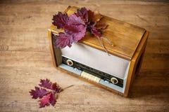 Autumn mood. Music Royalty Free Stock Image