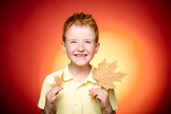 Autumn mood and weather are warm and sunny and rain is possible Smiling boy wearing in fashionable seasonal clothes. Having Autumnal mood. Autumn concept royalty free stock image