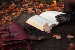 Autumn mood. Young woman reading a book in park in the fall Royalty Free Stock Photography