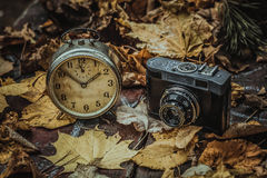 Autumn moods. Old clock and camera on autumn leaves on wooden table on natural background Stock Photos