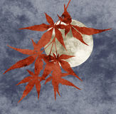 Autumn moon collage. Paper texture, limited pallette Royalty Free Stock Photos