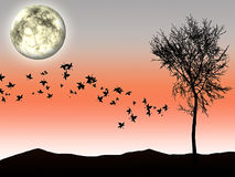 Autumn the moon light and tree silhouette on background Stock Images