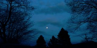 Autumn Moonlit Sky colorido fotografia de stock royalty free