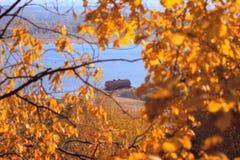 Autumn mooring Stock Photo