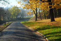 Autumn morning. Beautiful morning in the village with colorful fall leafs Stock Images