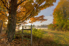 Autumn Morning. Sunrise on misty autumn morning Royalty Free Stock Images